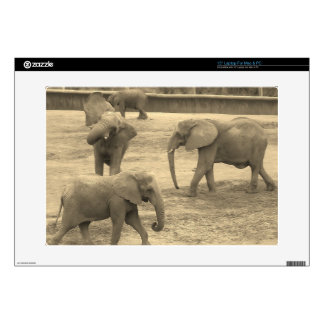 Elephants - by Fern Savannah Laptop Skins