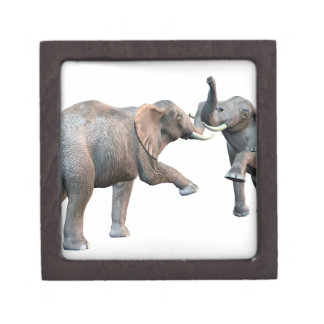 Elephant's Challenge Keepsake Box