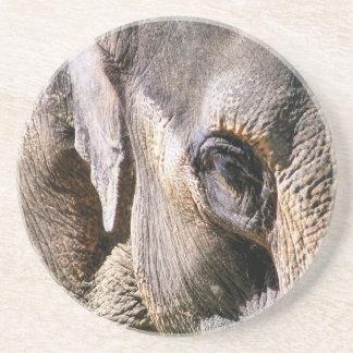 ELEPHANTS COASTER