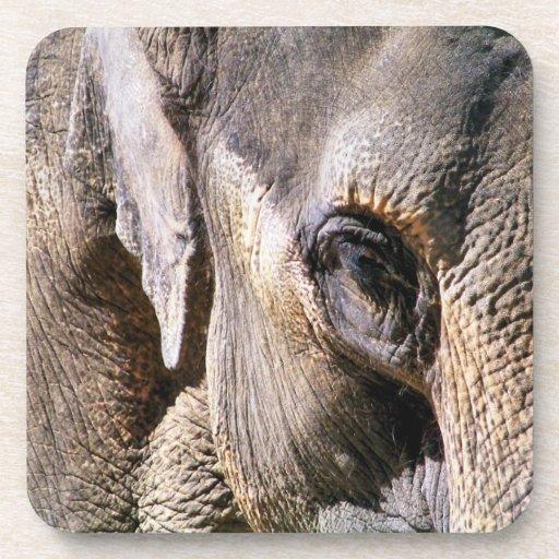 ELEPHANTS BEVERAGE COASTERS