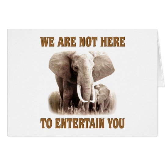 Elephants Deserve Respect Card