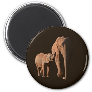 Elephants - Family Magnet