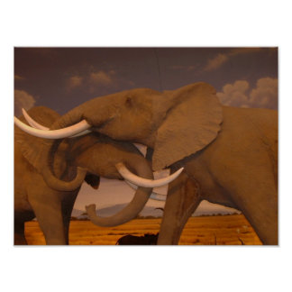 Elephants!  Framed Print