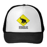 Elephants Hats