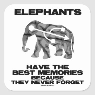 Elephants Have The Best Memories They Never Forget Square Sticker
