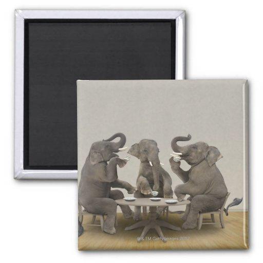 Elephants having tea party fridge magnet