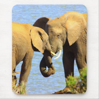 elephants in love mouse pad