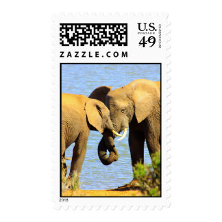 elephants in love postage stamp