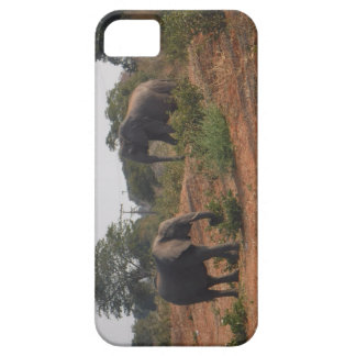 Elephants in the Wild iPhone SE/5/5s Case
