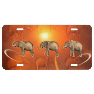 Elephants License Plate