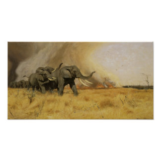 Elephants Moving Before A Veldt Fire Poster