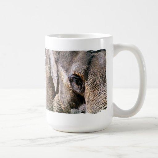ELEPHANTS MUGS