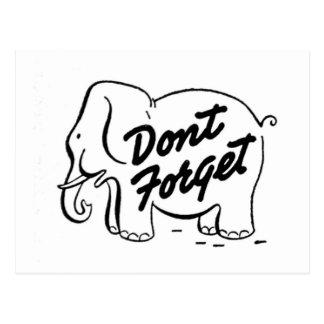 Elephants Never Forget Stationary Postcard