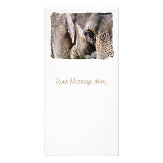 ELEPHANTS PHOTO CARD