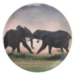 Elephants. Plates