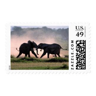 Elephants. Postage