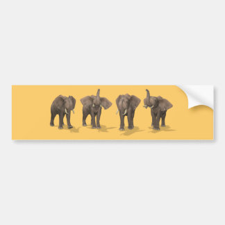 Elephants Quartet Bumper Sticker