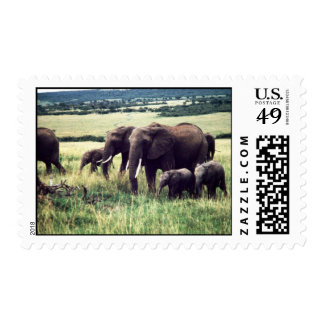 elephants stamp
