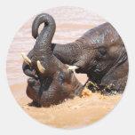 Elephants water world classic round sticker