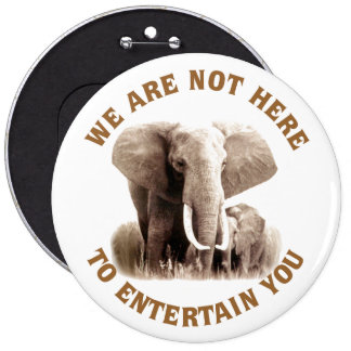 Elephats Deserve Respect 6 Inch Round Button
