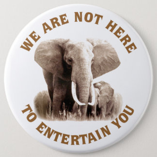 Elephats Deserve Respect Button