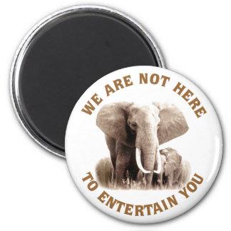 Elephats merece respecto imán redondo 5 cm