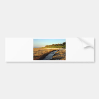 Elevated coral reef tropical island bumper sticker