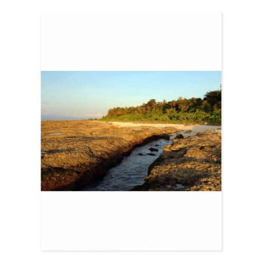 Elevated coral reef tropical island post card