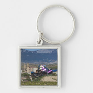 Elevated town view and Hotel Marques de Riscal 2 Keychain