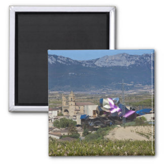 Elevated town view and Hotel Marques de Riscal 2 Magnets
