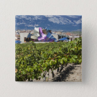 Elevated town view and Hotel Marques de Riscal Button