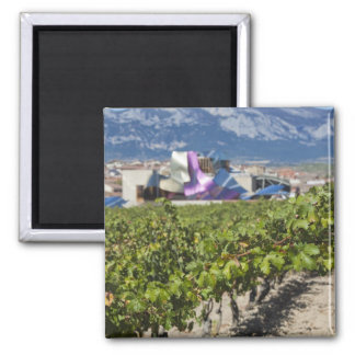 Elevated town view and Hotel Marques de Riscal Magnets