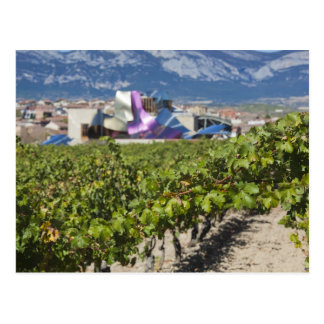 Elevated town view and Hotel Marques de Riscal Postcard