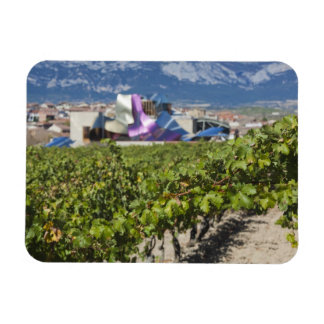 Elevated town view and Hotel Marques de Riscal Rectangle Magnets