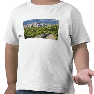Elevated town view and Hotel Marques de Riscal Tee Shirts