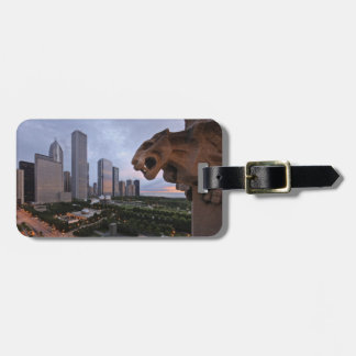 Elevated View of Milennium Park Bag Tag