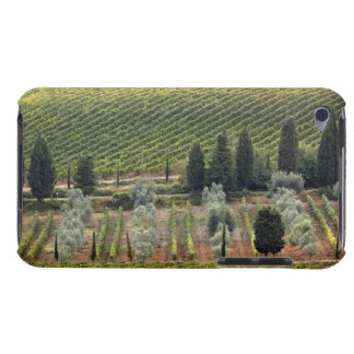 Elevated view of vineyard and olive trees barely there iPod covers