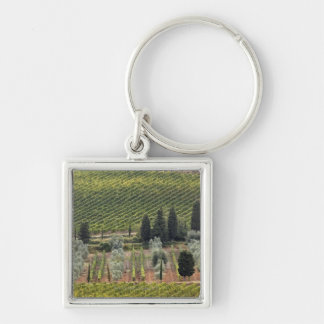 Elevated view of vineyard and olive trees keychain