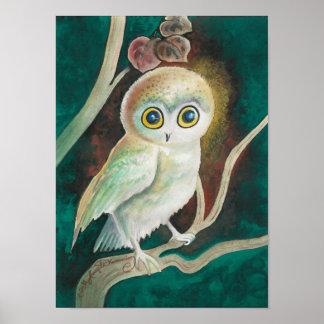 Elf Owl On Autumn Branch Poster