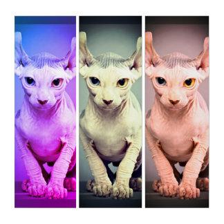 Elf Sphinx Cat Design Triptych