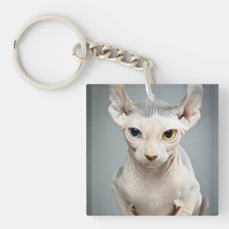 Elf Sphinx Cat Photograph Double-Sided Square Acrylic Keychain