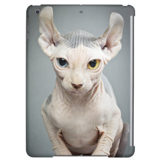 Elf Sphinx Cat Photograph Image Cover For iPad Air