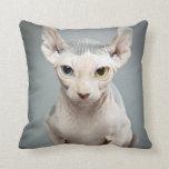 Elf Sphinx Cat Photograph Pillow