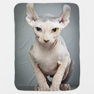 Elf Sphinx Cat Photograph Receiving Blanket
