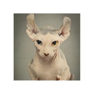 Elf Sphinx Cat Photograph Wood Wall Art