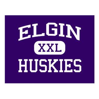 Elgin - perros esquimales - High School secundaria Tarjeta Postal