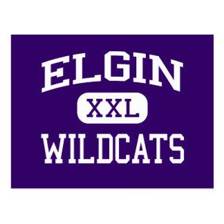 Elgin - Wildcats - Elgin High School - Elgin Texas Postcard