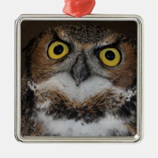 Eli - Great Horned Owl I Metal Ornament