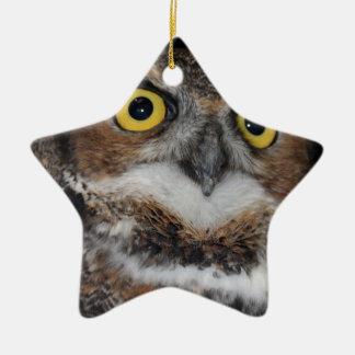 Eli - Great Horned Owl V Ceramic Ornament