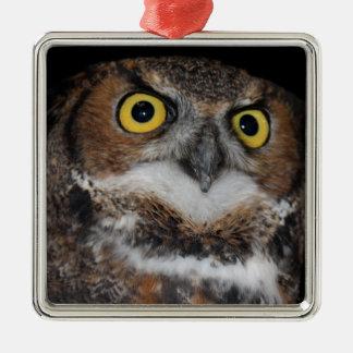 Eli - Great Horned Owl V Metal Ornament